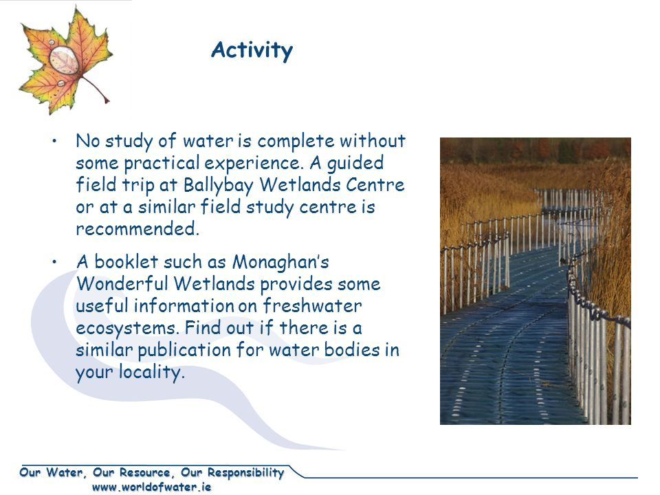 Our Water, Our Resource, Our Responsibility www.worldofwater.ie Activity No study of water is complete without some practical experience.