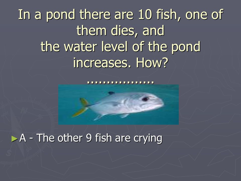 In a pond there are 10 fish, one of them dies, and the water level of the pond increases.