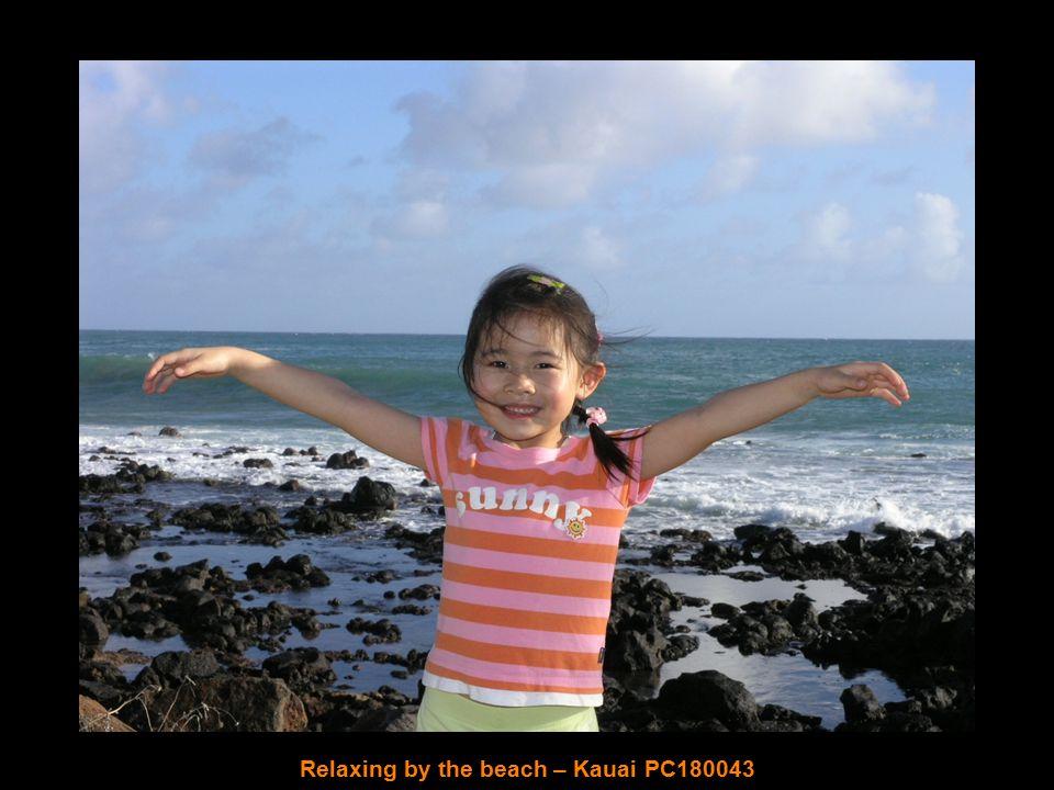 Chinaman's Hat – Oahu P1010371