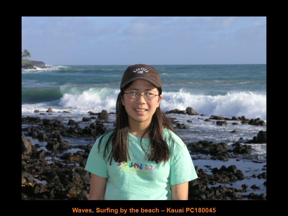 Relaxing by the beach – Kauai PC180043