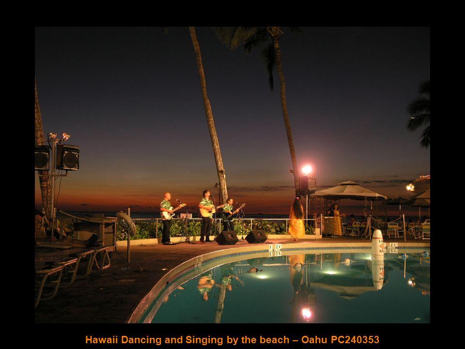 Palm Trees by the Beach – Oahu PC240329
