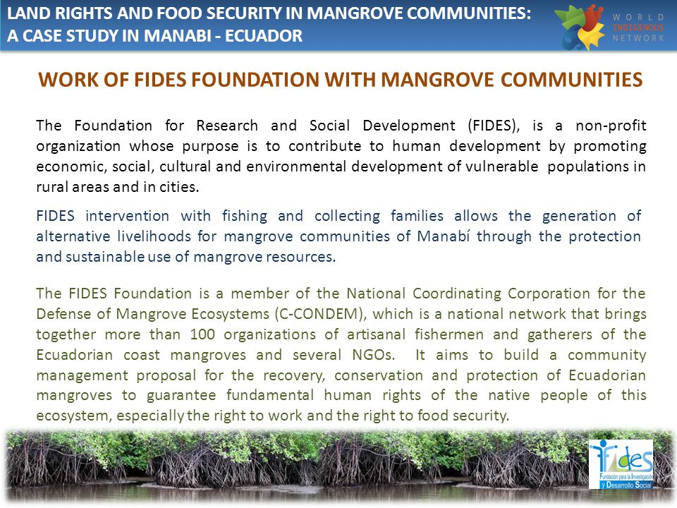 WORK OF FIDES FOUNDATION WITH MANGROVE COMMUNITIES The Foundation for Research and Social Development (FIDES), is a non-profit organization whose purpose is to contribute to human development by promoting economic, social, cultural and environmental development of vulnerable populations in rural areas and in cities.