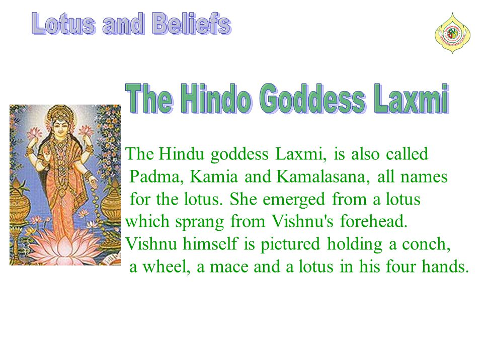 The Hindu goddess Laxmi, is also called Padma, Kamia and Kamalasana, all names for the lotus.