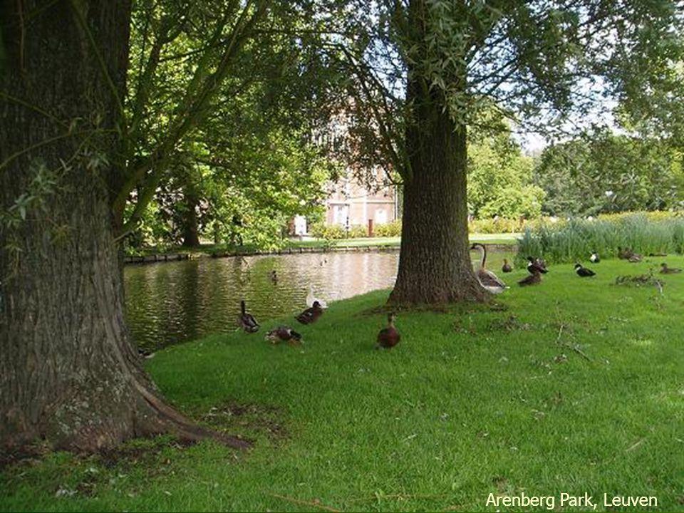 Leuven Kruidtuin Park