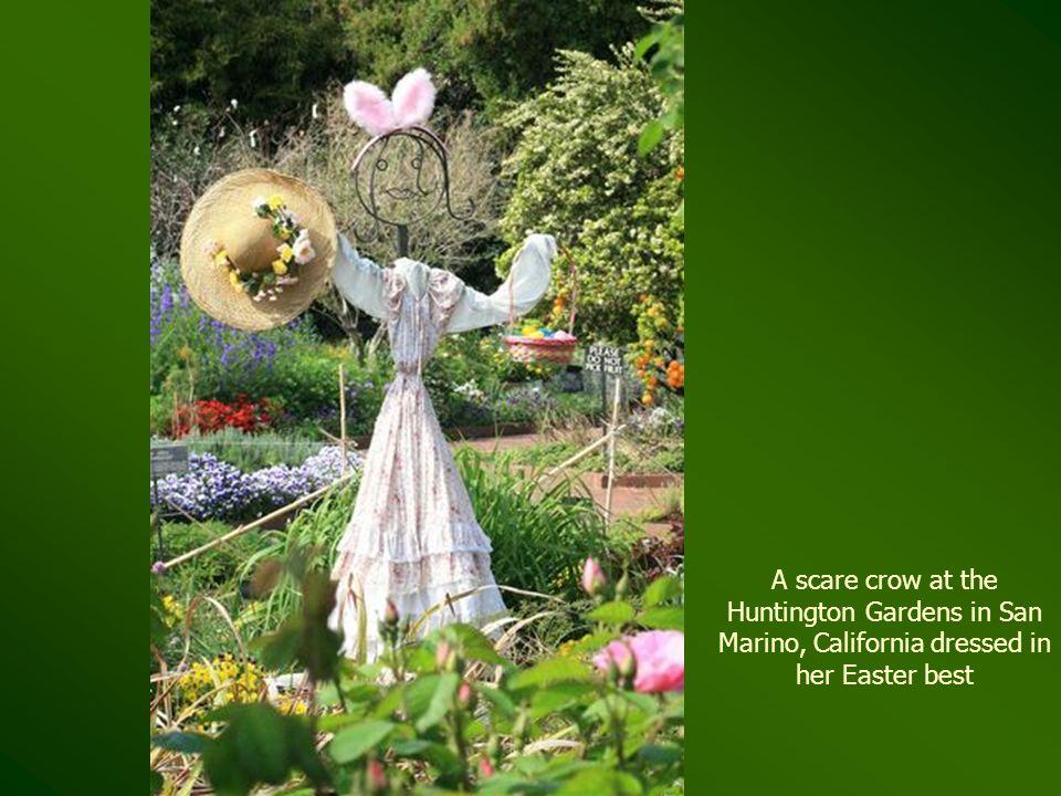 The Japanese garden at Huntington Gardens in San Marino, California