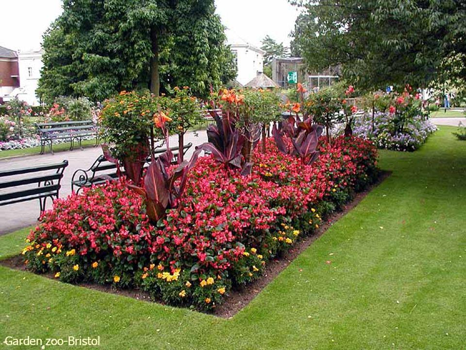 Olbrich Gardens Spring Afternoon
