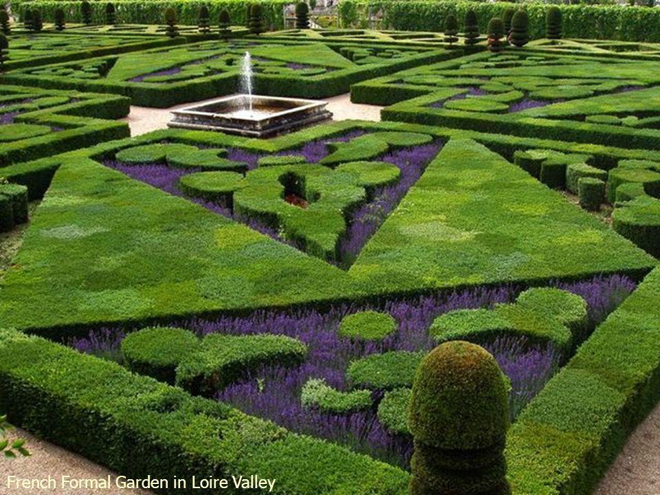 Gourdon s Garden - Provence - France