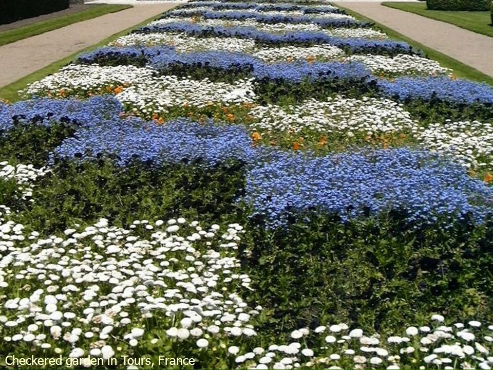 French Formal Garden in Loire Valley