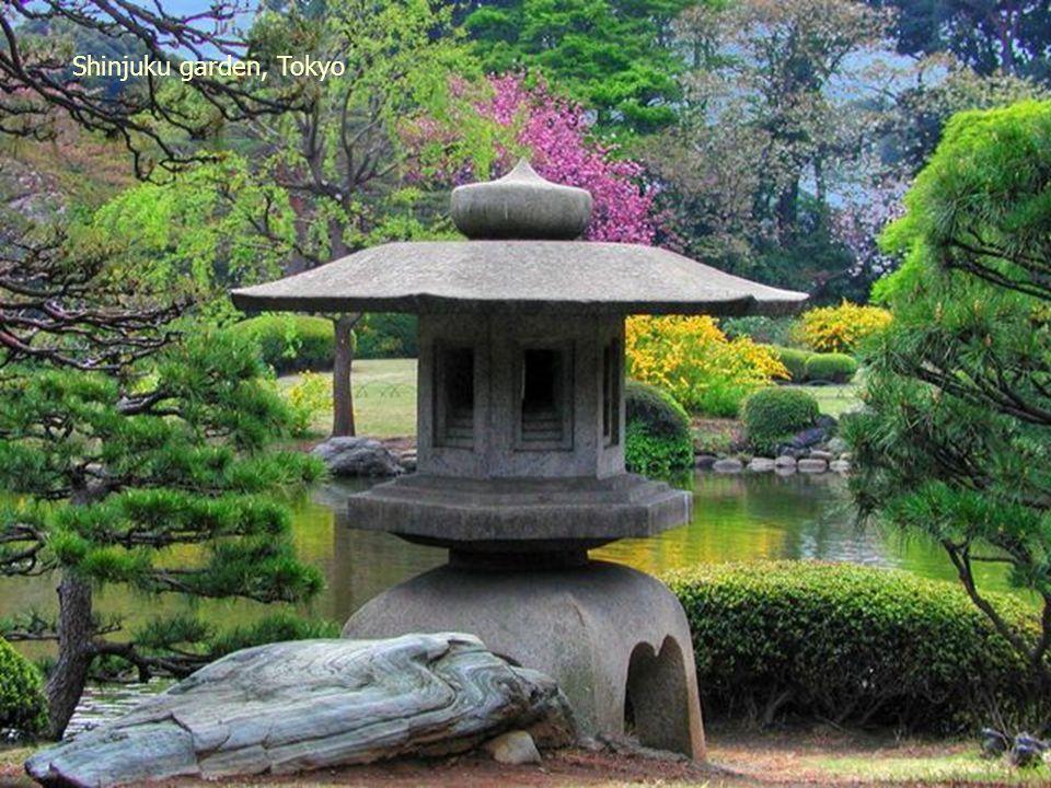 beautiful garden near Meguro St. in Tokyo