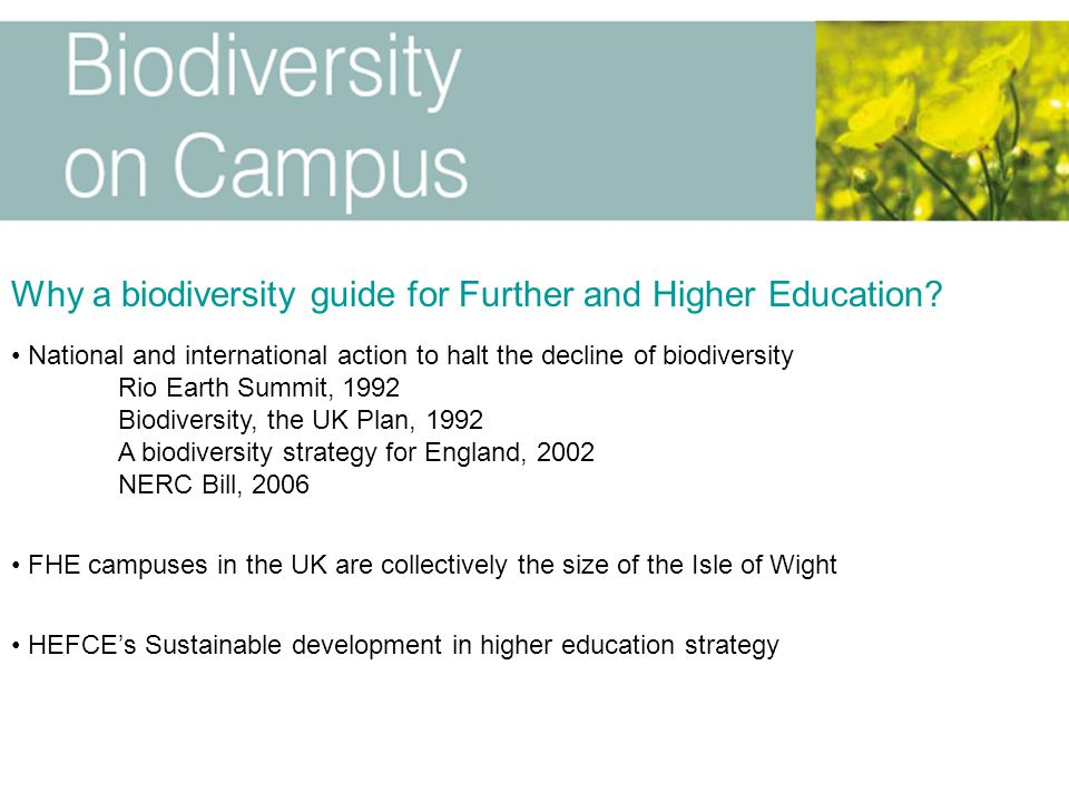 Why a biodiversity guide for Further and Higher Education? National and international action to halt the decline of biodiversity Rio Earth Summit, 199