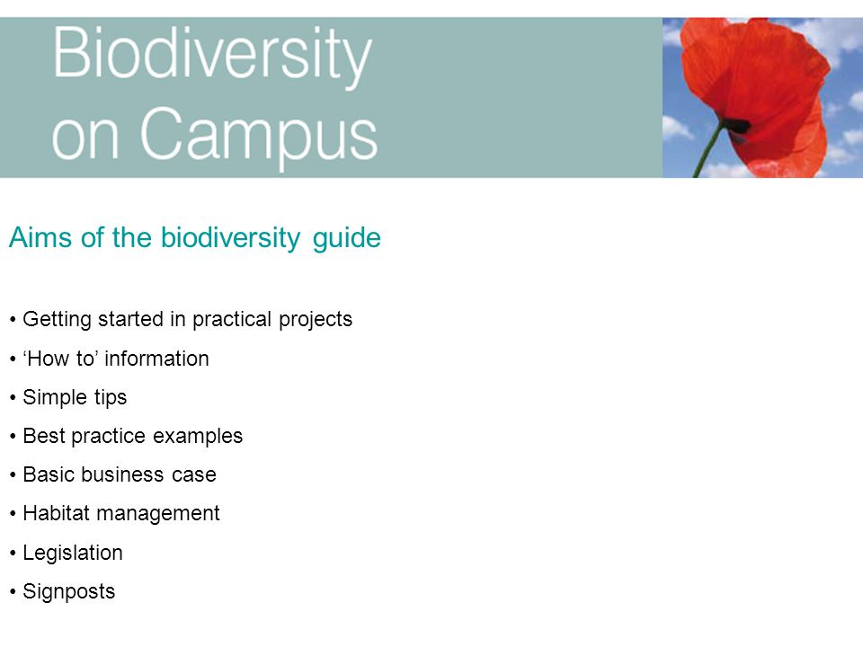 Aims of the biodiversity guide Getting started in practical projects 'How to' information Simple tips Best practice examples Basic business case Habit