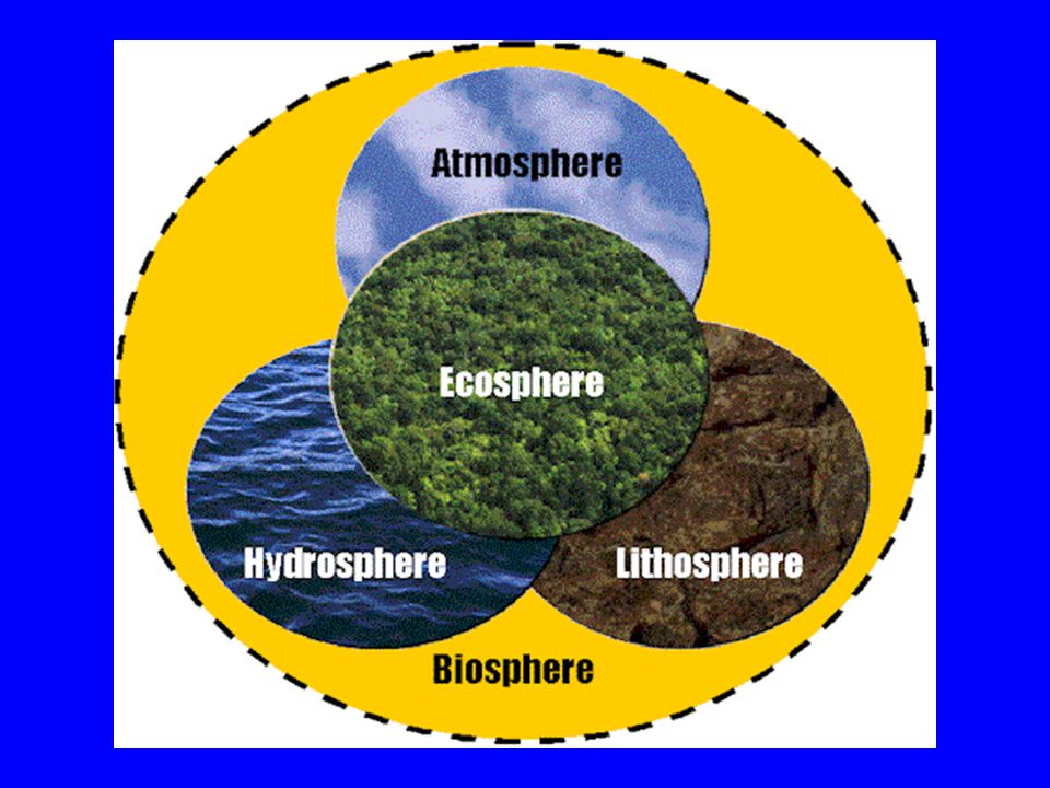 CLASSIFICATION OF NATURAL RESOURCES Complex resources Simple biotic resources Recyclable Non- recyclable RENEWABLE NON-RENEWABLE NATURAL RESOURCES UNCONDITIONALLY RENEWABLE CONDITIONALLY RENEWABLE Abiotic flow resources Abiotic cycling resources