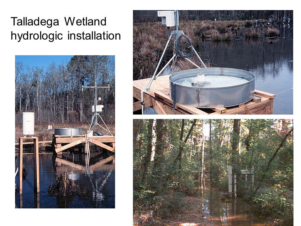 Talladega Wetland hydrologic installation