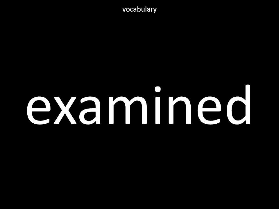 examined vocabulary