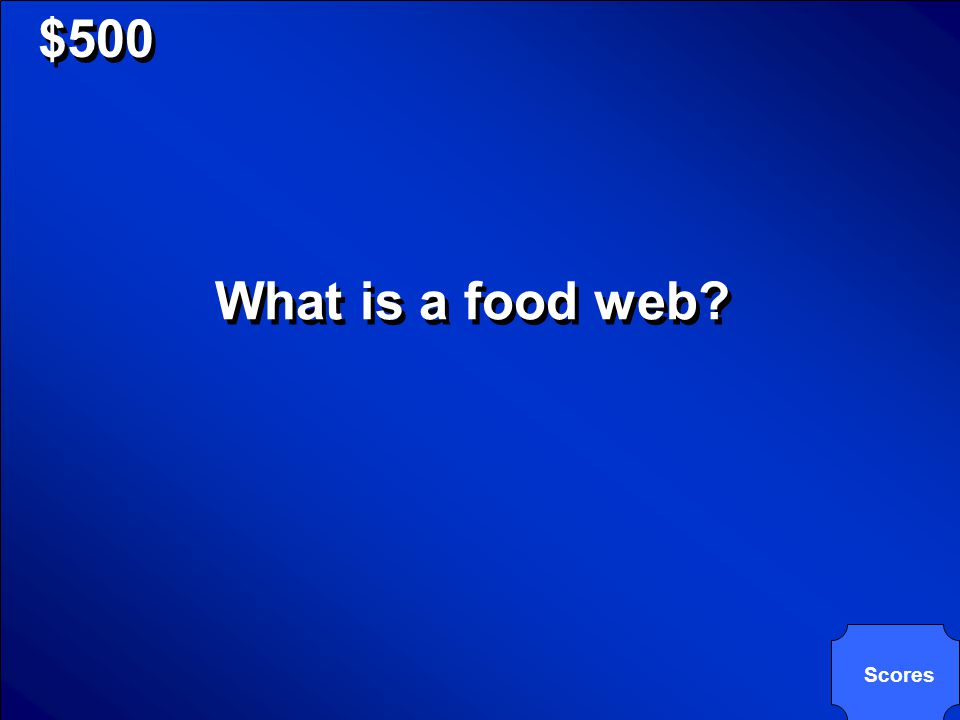 © Mark E. Damon - All Rights Reserved $500 Many food chains that are connected