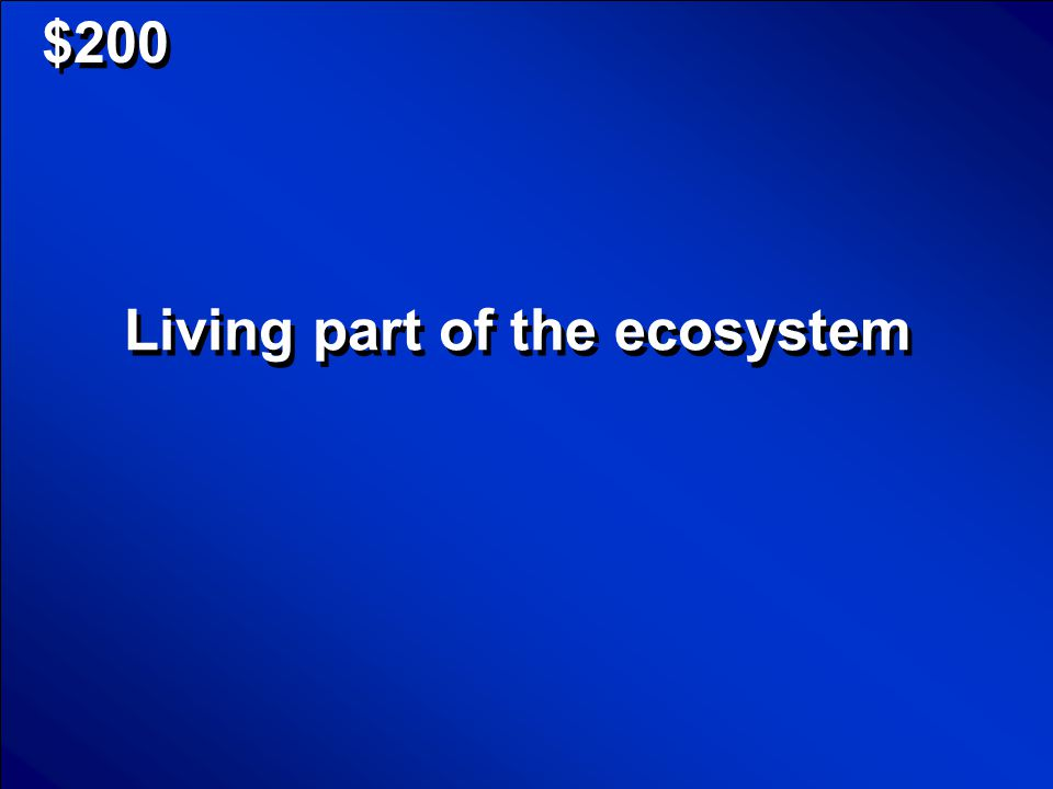 © Mark E. Damon - All Rights Reserved $100 What is ecosystem Scores