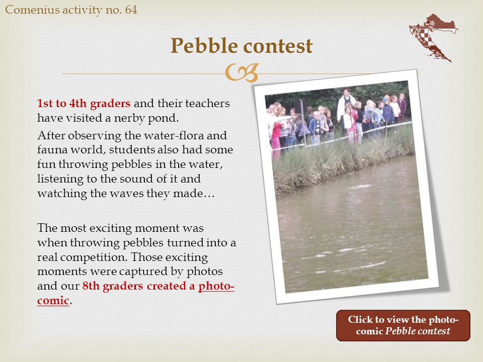  Pebble contest Comenius activity no.