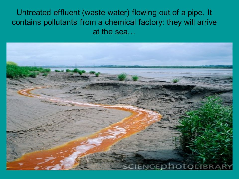 Untreated effluent (waste water) flowing out of a pipe. It contains pollutants from a chemical factory: they will arrive at the sea…
