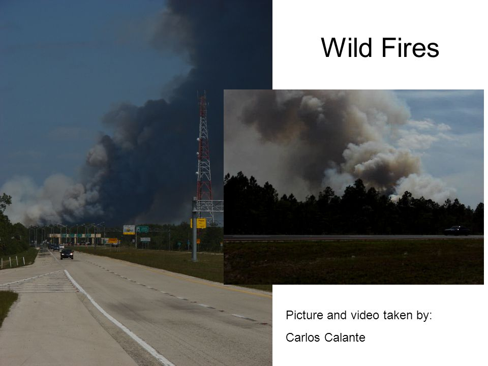 Wild Fires Picture and video taken by: Carlos Calante