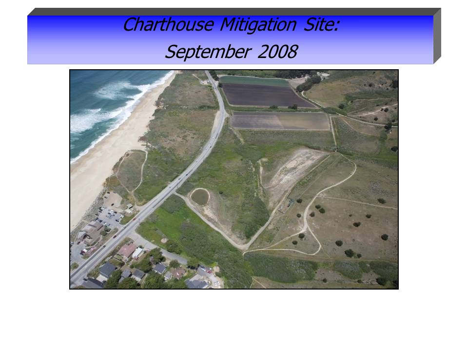 Charthouse Mitigation Site: September 2008
