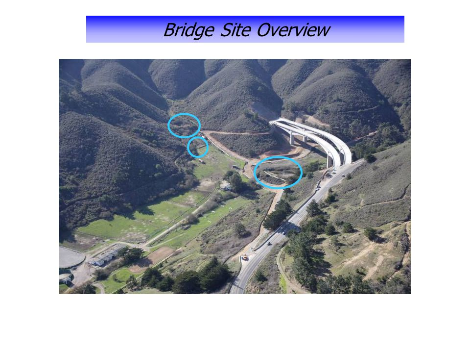 Bridge Site Overview
