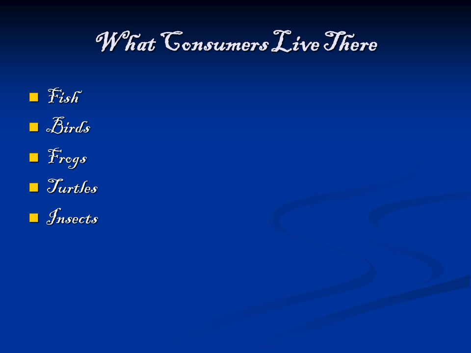 What Consumers Live There Fish Fish Birds Birds Frogs Frogs Turtles Turtles Insects Insects