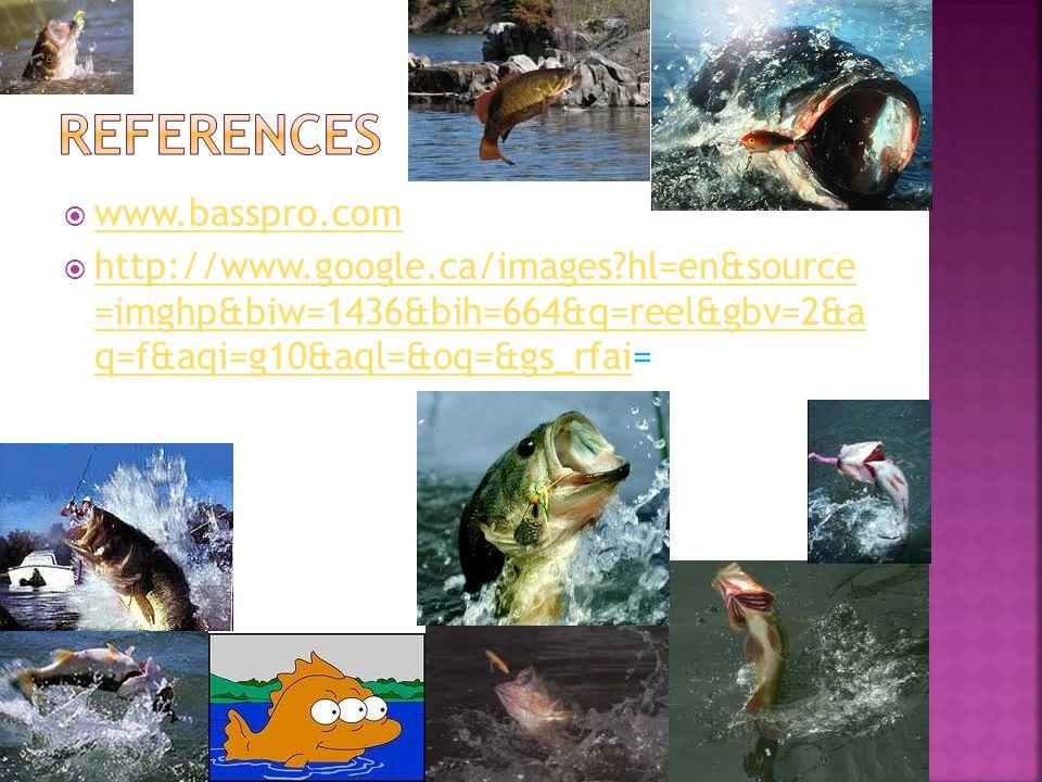  www.basspro.com www.basspro.com  http://www.google.ca/images?hl=en&source =imghp&biw=1436&bih=664&q=reel&gbv=2&a q=f&aqi=g10&aql=&oq=&gs_rfai= http://www.google.ca/images?hl=en&source =imghp&biw=1436&bih=664&q=reel&gbv=2&a q=f&aqi=g10&aql=&oq=&gs_rfai