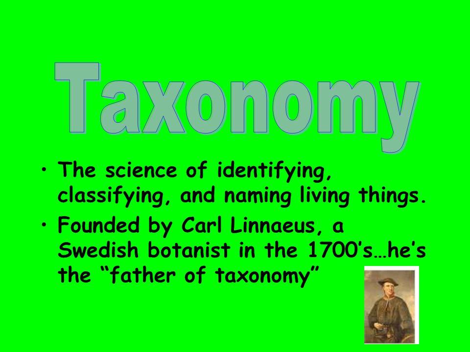 Carolus Linnaeus… Invented Taxonomy