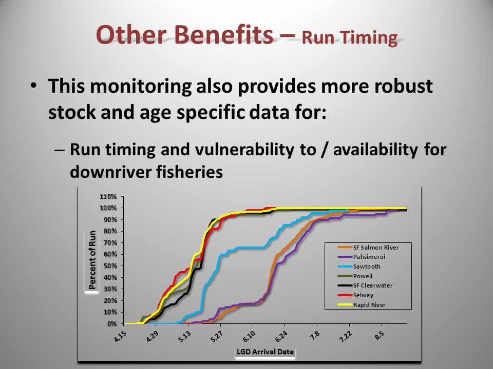 This monitoring also provides more robust stock and age specific data for: – Run timing and vulnerability to / availability for downriver fisheries Other Benefits – Run Timing