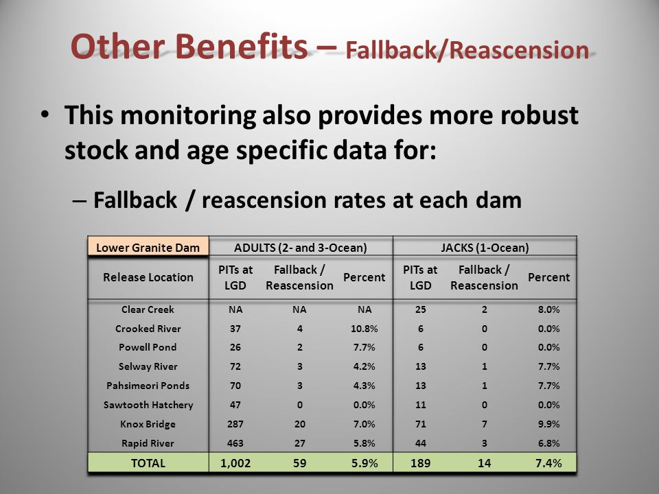 This monitoring also provides more robust stock and age specific data for: – Fallback / reascension rates at each dam Other Benefits – Fallback/Reascension