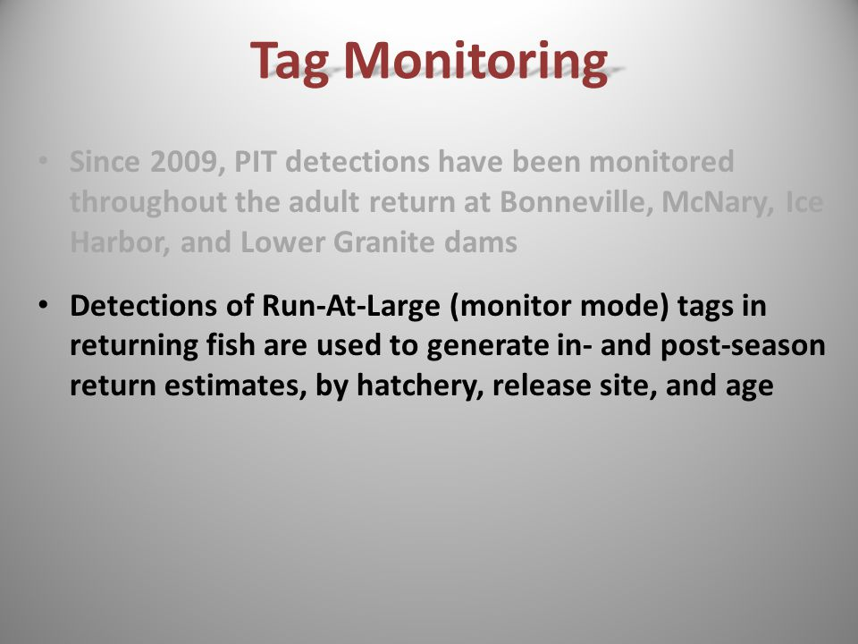 Since 2009, PIT detections have been monitored throughout the adult return at Bonneville, McNary, Ice Harbor, and Lower Granite dams Detections of Run-At-Large (monitor mode) tags in returning fish are used to generate in- and post-season return estimates, by hatchery, release site, and age Tag Monitoring