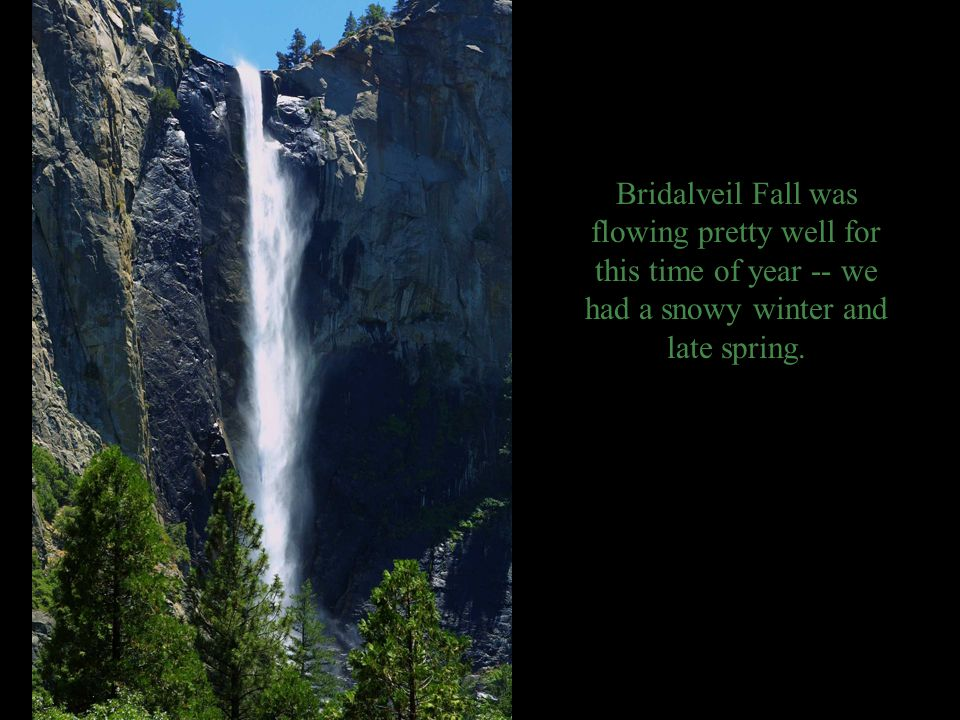 Bridalveil Fall was flowing pretty well for this time of year -- we had a snowy winter and late spring.