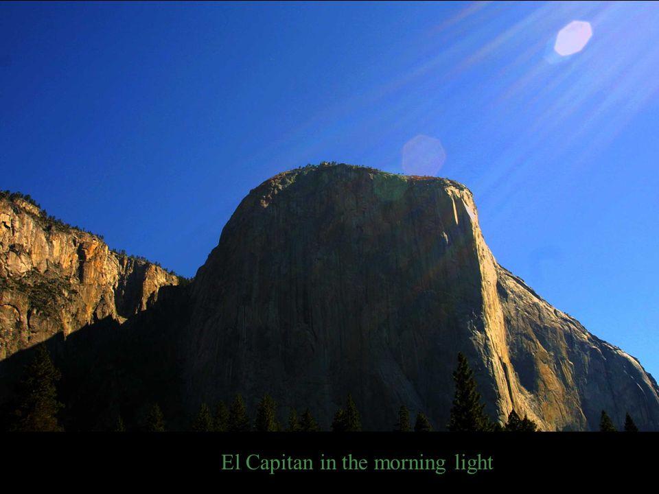 El Capitan in the morning light