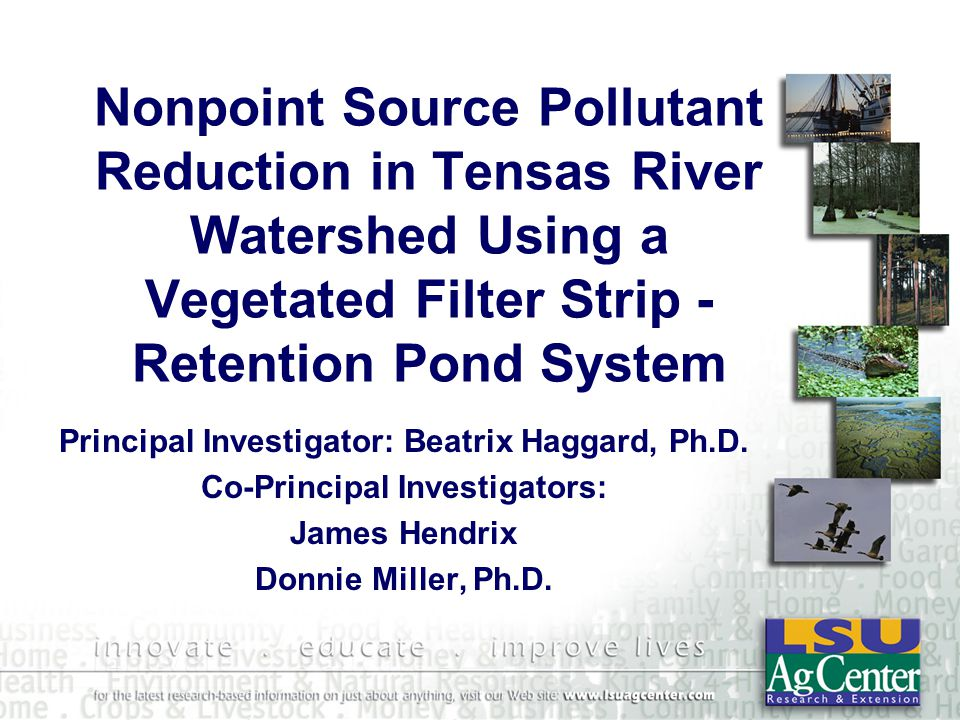 Nonpoint Source Pollutant Reduction in Tensas River Watershed Using a Vegetated Filter Strip - Retention Pond System Principal Investigator: Beatrix Haggard, Ph.D.