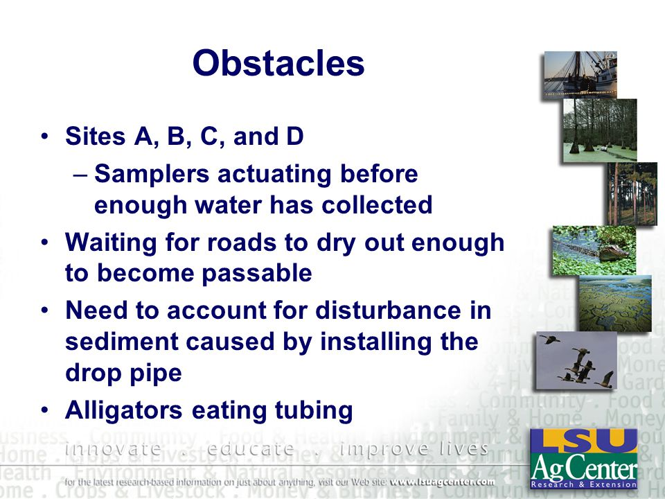 Obstacles Sites A, B, C, and D –Samplers actuating before enough water has collected Waiting for roads to dry out enough to become passable Need to account for disturbance in sediment caused by installing the drop pipe Alligators eating tubing