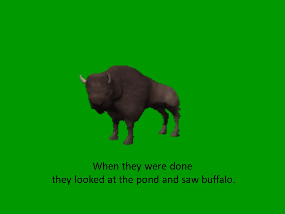 When they were done they looked at the pond and saw buffalo.