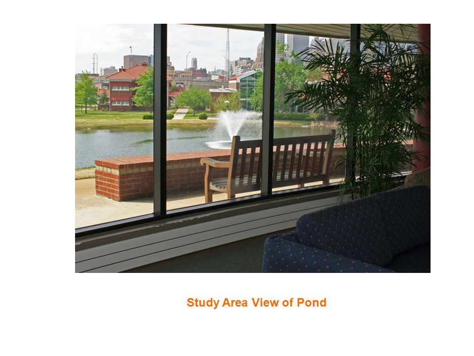Study Area View of Pond
