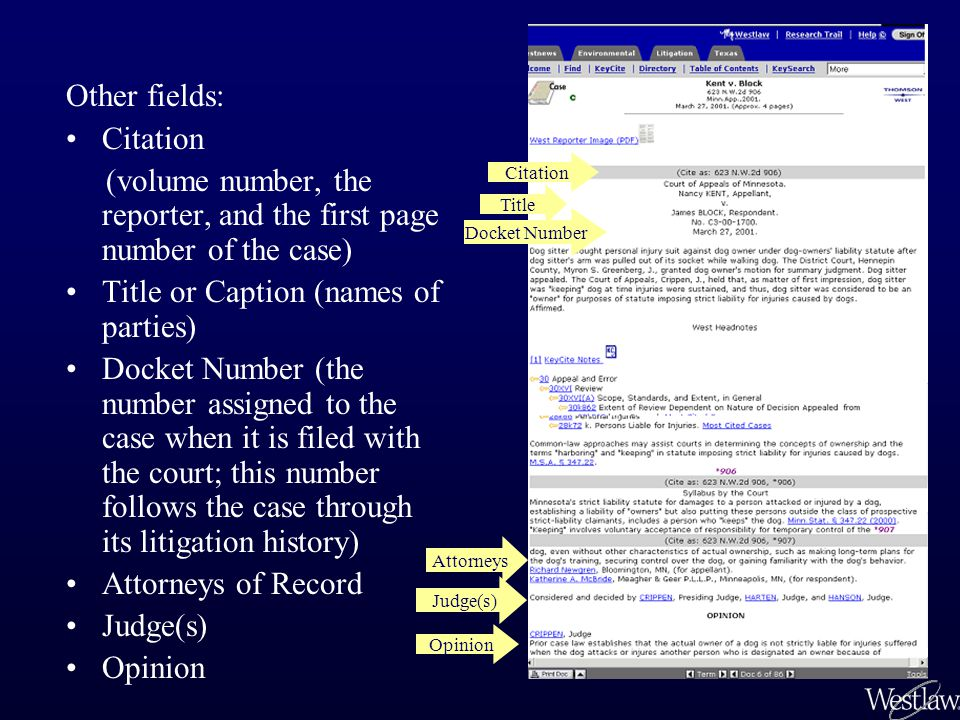 Other fields: Citation (volume number, the reporter, and the first page number of the case) Title or Caption (names of parties) Docket Number (the num