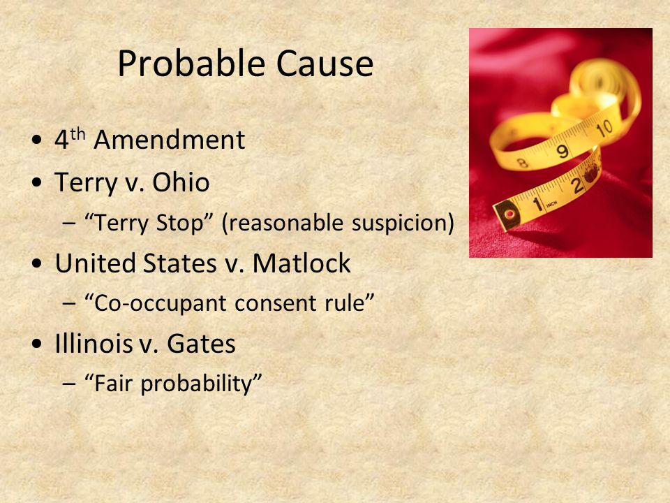 Probable Cause 4 th Amendment Terry v.Ohio – Terry Stop (reasonable suspicion) United States v.