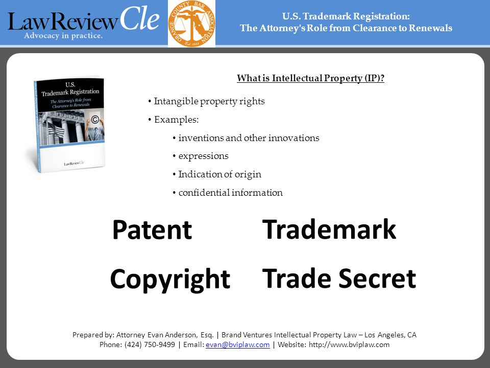 What is Intellectual Property (IP).
