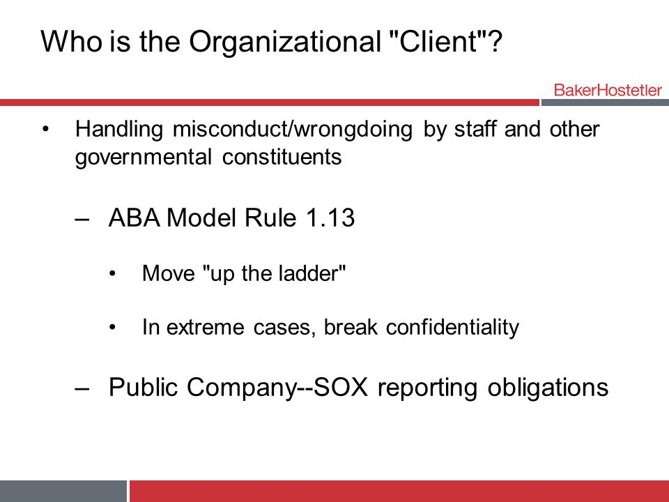 Who is the Organizational Client .