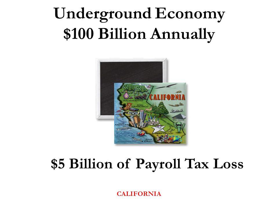 Underground Economy $100 Billion Annually $5 Billion of Payroll Tax Loss CALIFORNIA