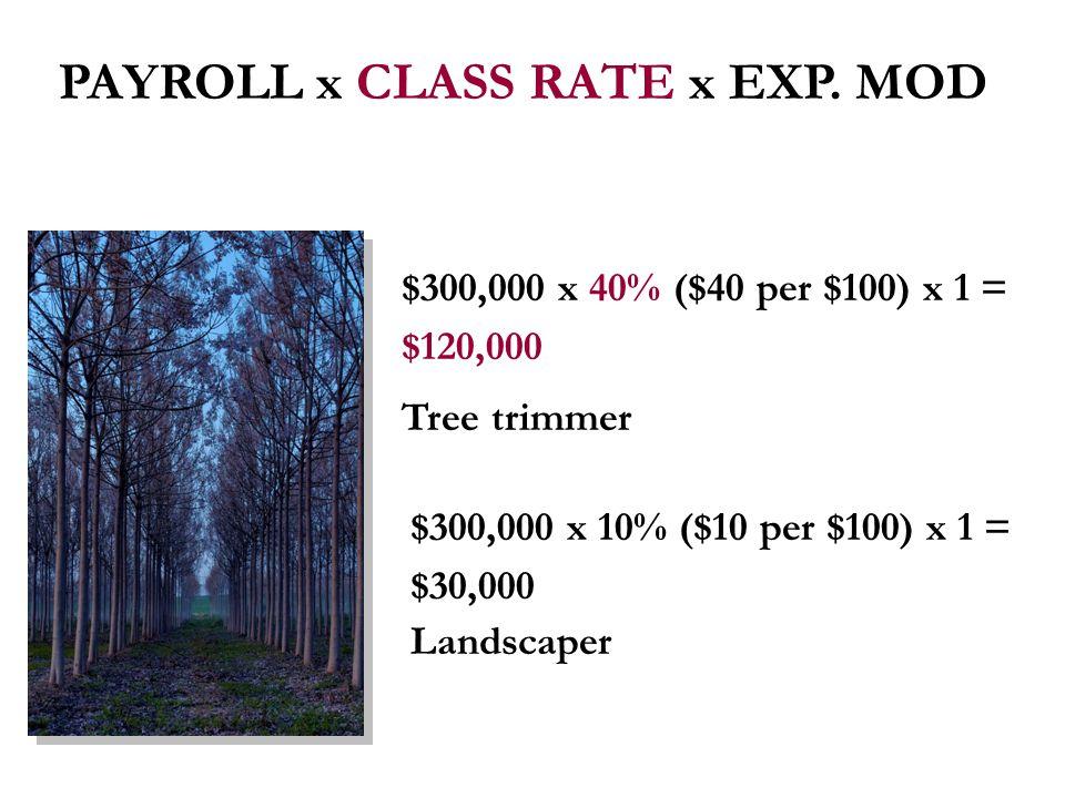 $300,000 x 40% ($40 per $100) x 1 = $120,000 Tree trimmer $300,000 x 10% ($10 per $100) x 1 = $30,000 Landscaper PAYROLL x CLASS RATE x EXP.