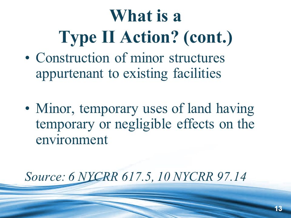 13 What is a Type II Action.