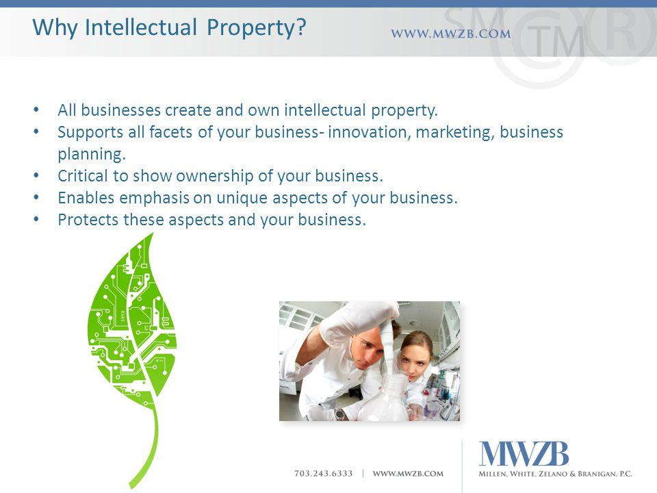 Why Intellectual Property. All businesses create and own intellectual property.