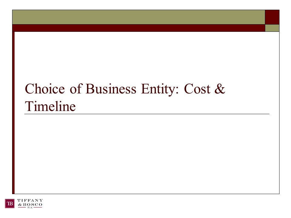 Choice of Business Entity: Cost & Timeline