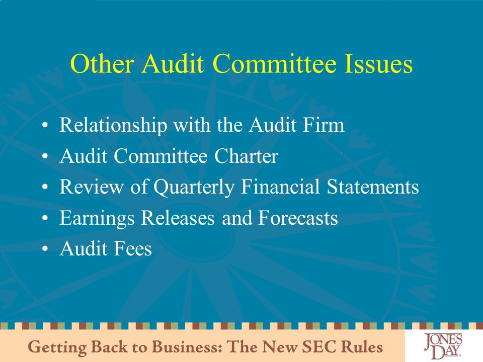 Other Audit Committee Issues Relationship with the Audit Firm Audit Committee Charter Review of Quarterly Financial Statements Earnings Releases and Forecasts Audit Fees