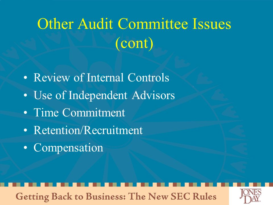 Other Audit Committee Issues (cont) Review of Internal Controls Use of Independent Advisors Time Commitment Retention/Recruitment Compensation