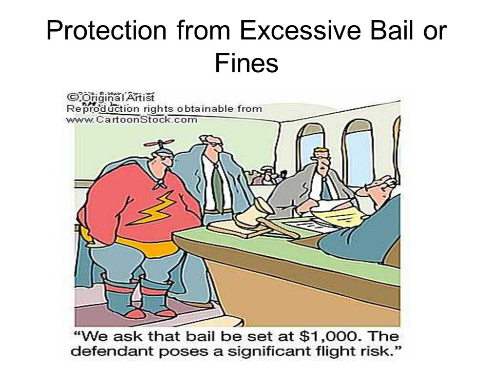 Protection from Excessive Bail or Fines