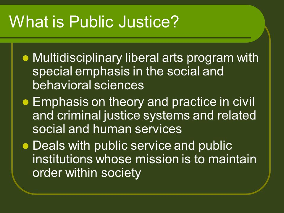 What is Public Justice? Multidisciplinary liberal arts program with special emphasis in the social and behavioral sciences Emphasis on theory and prac